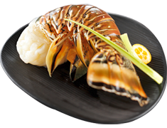 2 queues de langoustes crues Cuba, Cara�bes ou Mexique