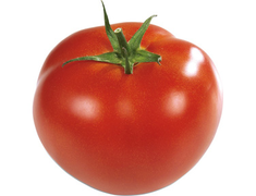 Tomates rondes - 1�kg