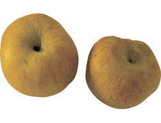 Pommes Canada Grise - 4 fruits