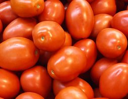Tomates allongées - 750 g environ - Origine France