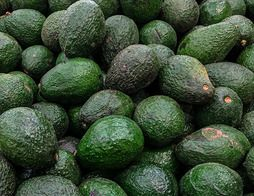 Avocats Hass BIO - 2 pièces - 400 g